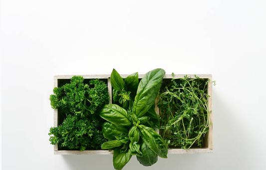comment cultiver des plantes aromatiques dans la cuisine. Black Bedroom Furniture Sets. Home Design Ideas